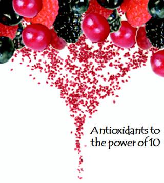 multifruit_seed_powder